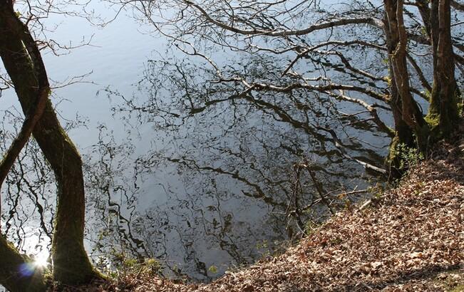 Lac du Drennec 063