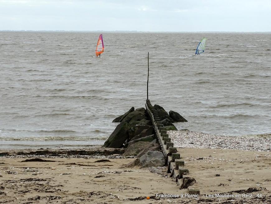 Petite balade sur le littoral aux Moutiers en retz