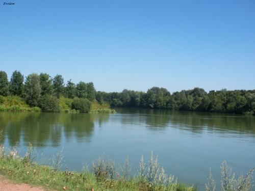 Le Lac du Héron à Villeneuve d'Ascq