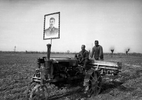 - Les résultats de la collectivisation sous Staline