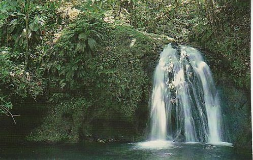 cascade Guadeloupe 001
