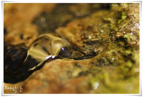 Douceur d'eau
