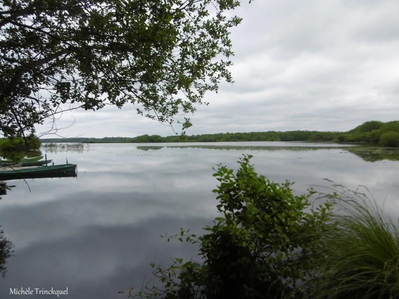 "Ma balade au Lac ""^post confinement""...."