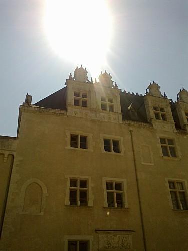 chateau pau (13)