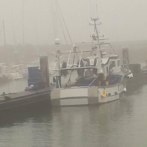 Le port sous la brume