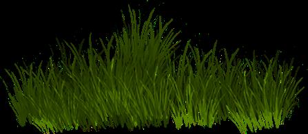 Verdure Série 6