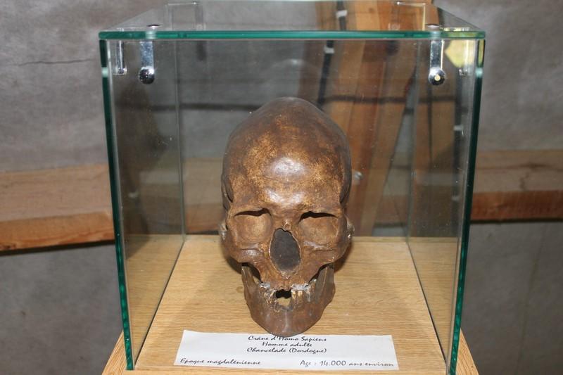 A Prehistoparc