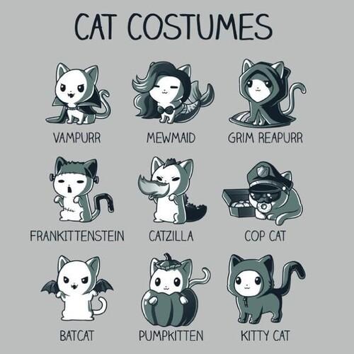 Costumes de chat