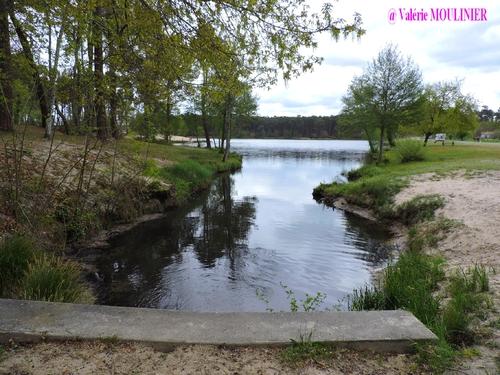 Casteljaloux : mes photos page 2
