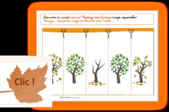 Images séquentielles arbre en automne