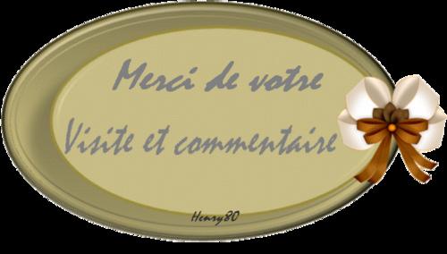 """THIERRY LE LURON """" 30 Ans déjà """""""