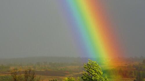 Comment se souvenir des couleurs de l'arc-en-ciel ?