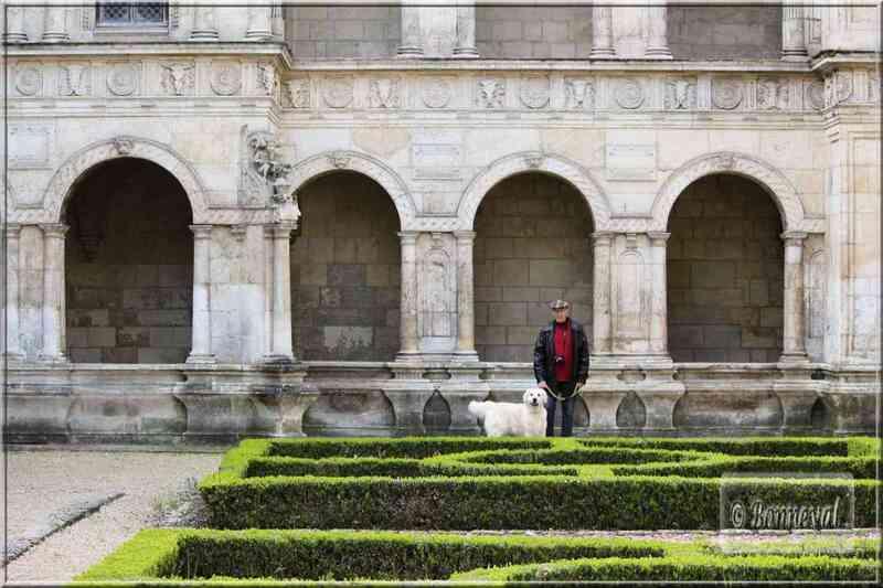 La Rochelle rue des Augustins Maison Henri II