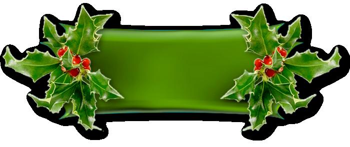 Design Noel