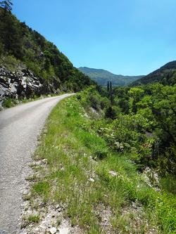 Inventaire de la faune coléoptérique de la région du col de Pommerol (Drôme)