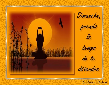 Animations **Samedi, Dimanche**