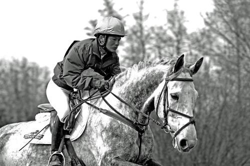 """BD/ DLB    """" Equitation....Longtemps une passion !"""""""
