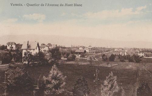 Avenue du Mont Blanc