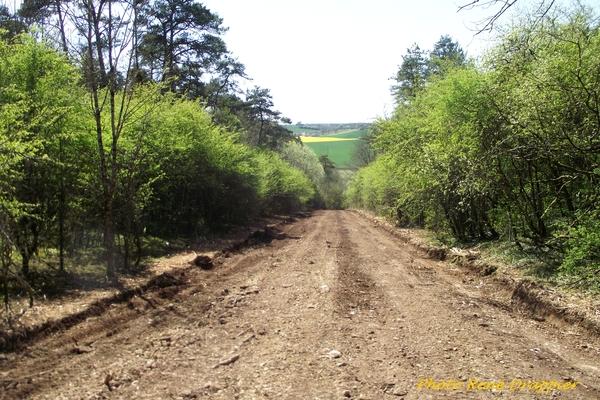 Des changements dans le paysage Châtillonnais, vus par René Drappier...