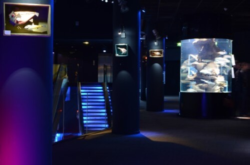 expo_aquarium_paris02.JPG