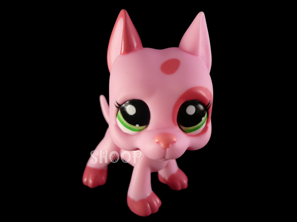 LPS 2598