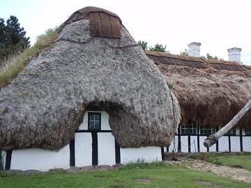 Des toits d'algues ...
