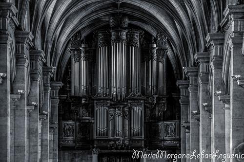L'orgue de Notre Dame