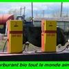 carburant bio.jpg