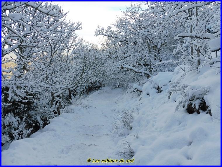Sainte-Baume sous la neige