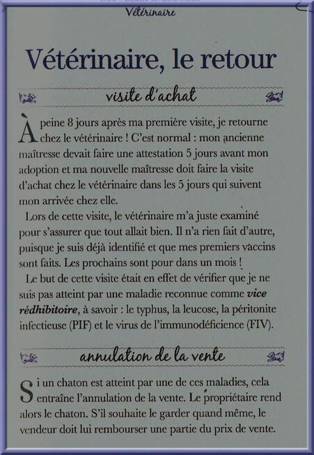 ♥ste Secrets de Chats♥