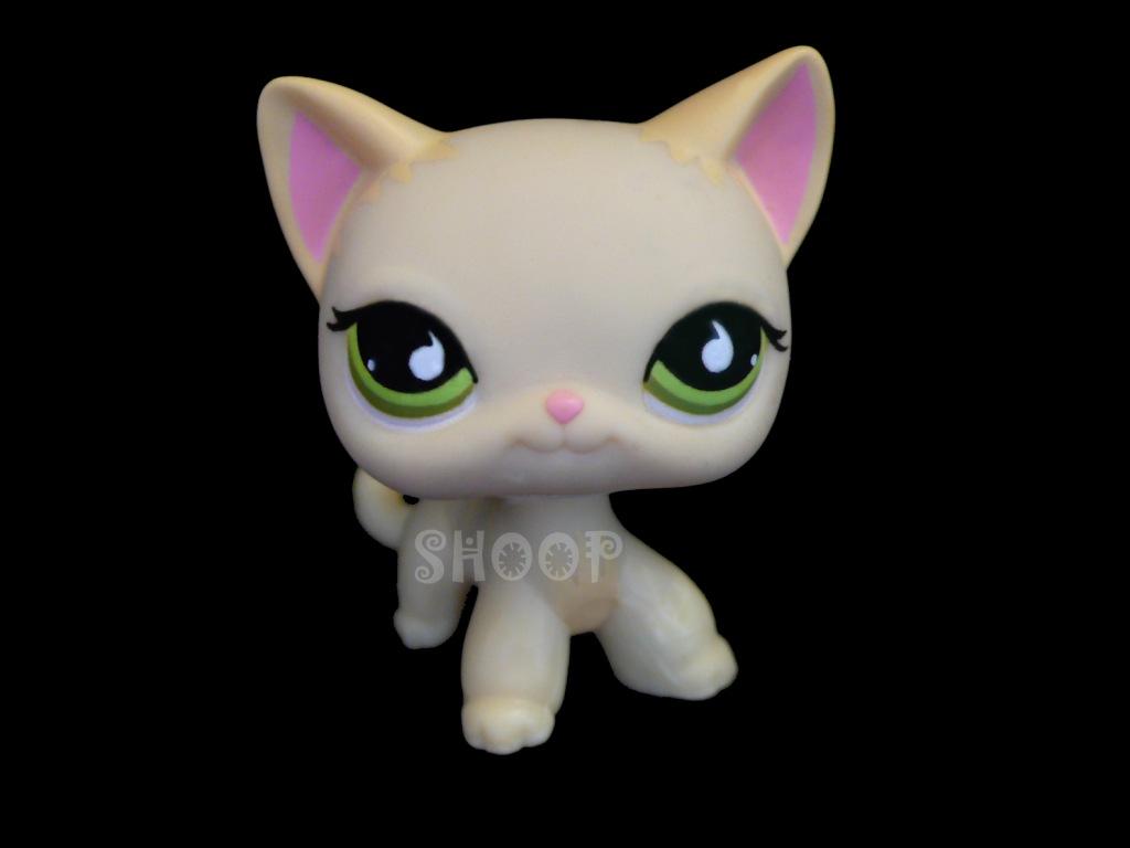 Image de chat lps image de - Petshop chaton ...