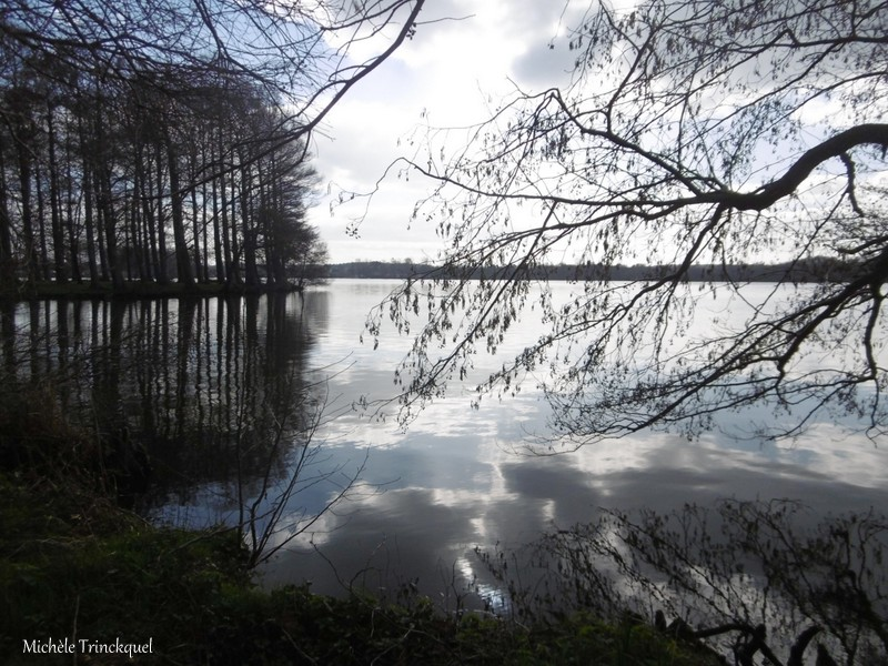Une balade à la Pointe des Vergnes à SOUSTONS (40), le 5 février (suite)...