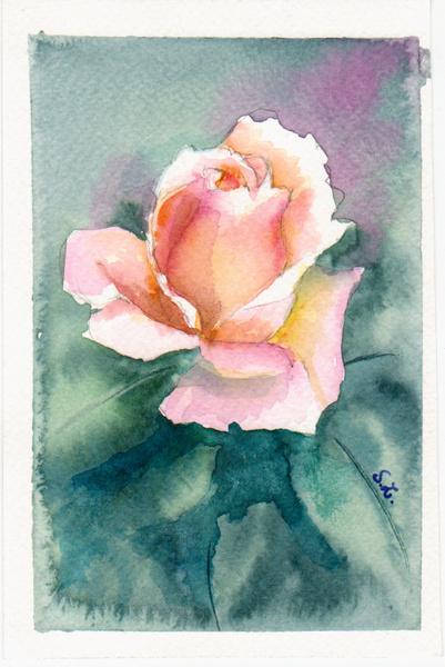 """Aquarelle : """" Mon amie la rose """""""
