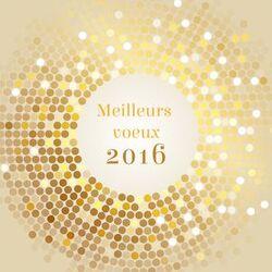 - Meilleurs voeux 2016