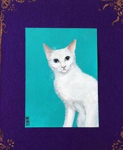 8 chats de Francesca