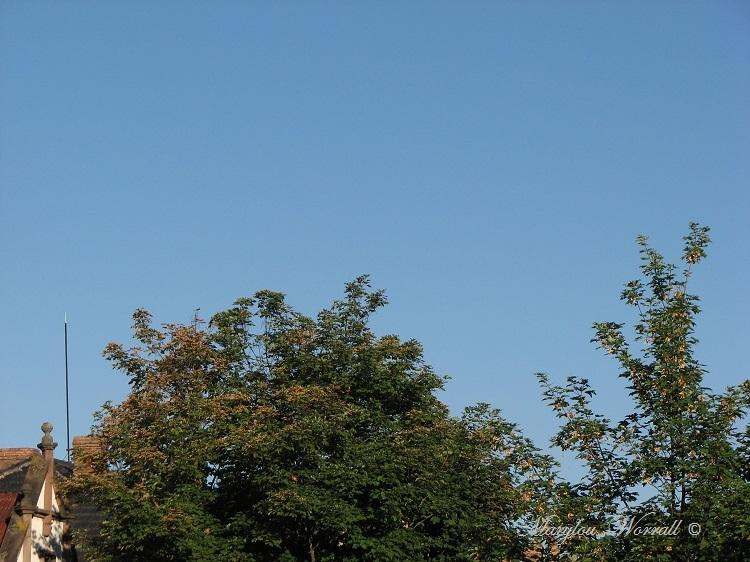 Ciel d'Alsace 326