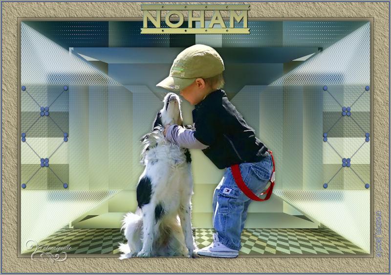*** Noham ***