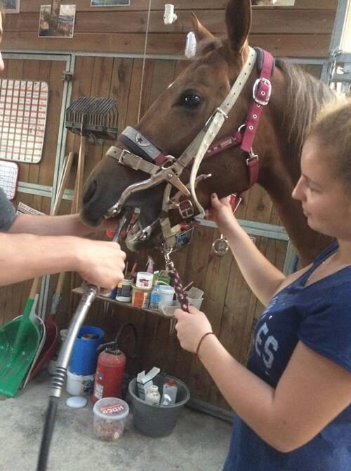 Brooke et le dentiste