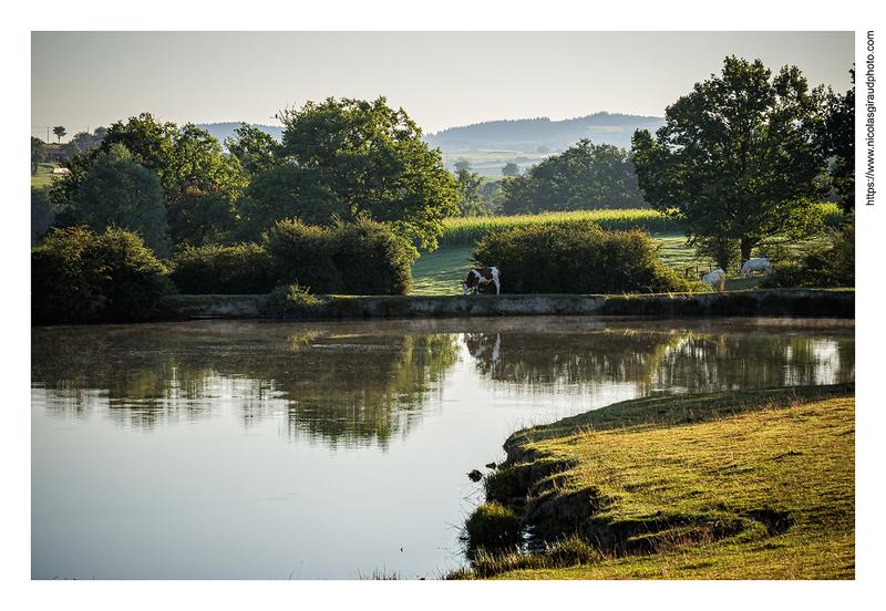 Et au milieu coule une rivière: la Loire