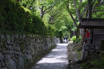 800px-sakamoto_otsu04s4592