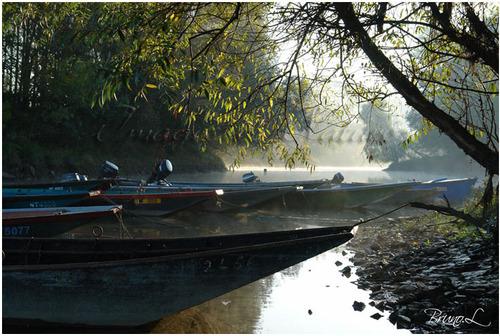 Paysage de Loire