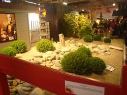 Foire internationale de Nancy, le Japon;les jardins japonais