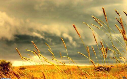 Gyönyörű őszi képek