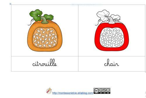 [Nomenclature] Citrouille