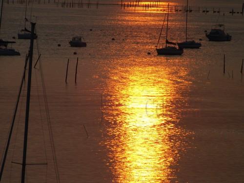 photos:(20) Bassin d'Arcachon