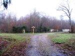 Les chemins de la forêt de Ferrières en Brie