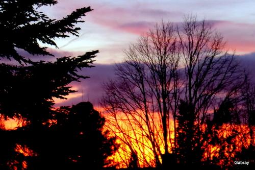 Soleil du soir en Toulousain