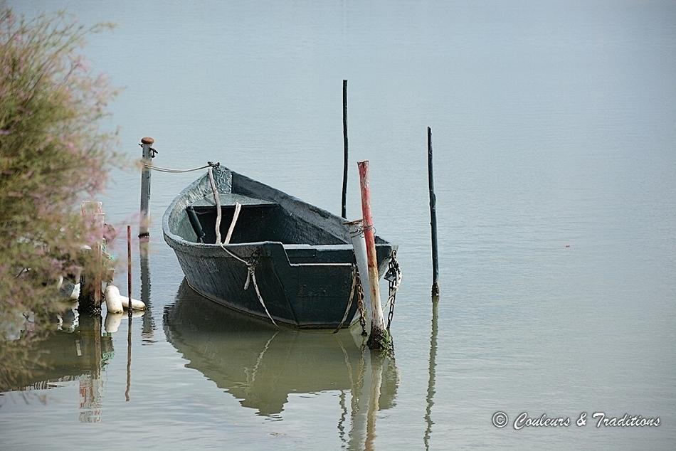 Autour de l'étang de Thau - 1