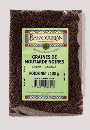 Vertus médicinales des plantes sauvages : Moutarde noire