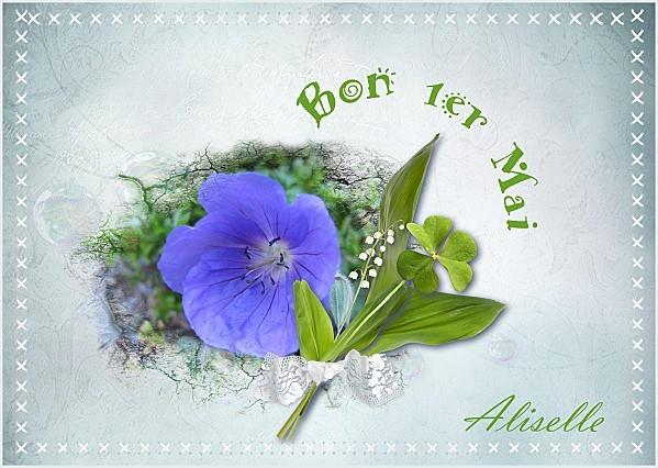 carte-1er-mai-geranium-bleu-kit-brin-de-bonheur-Thaliris-ca.jpg